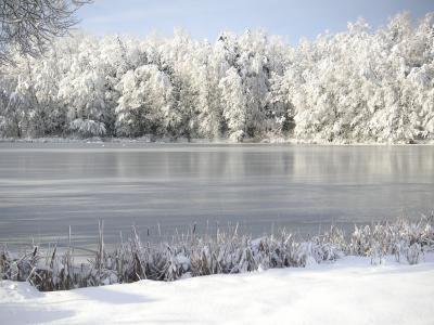 Winter in Rammenau